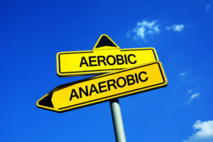 A complete  guide to Aerobic vs. Anaerobic Exercise