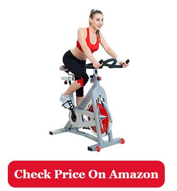 Sunny Health & Fitness Pro SF-B901 indoor bike